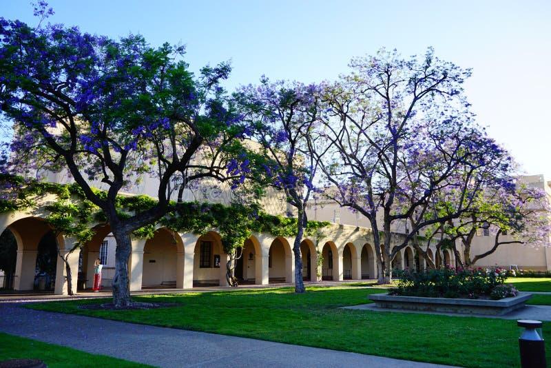 Der Campus von Caltech stockbild