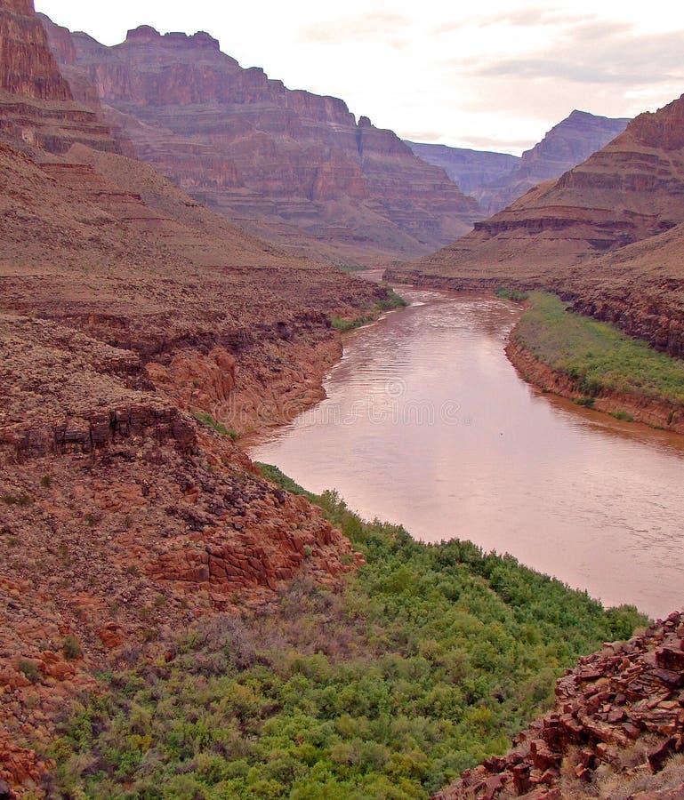 Der Colorado in Grand Canyon lizenzfreies stockbild
