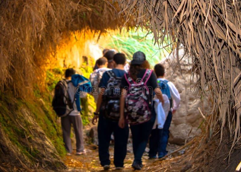 Der Eingang zur Schlucht von Ein Gedi und Führen sie auf jungen Reisenden lizenzfreies stockfoto