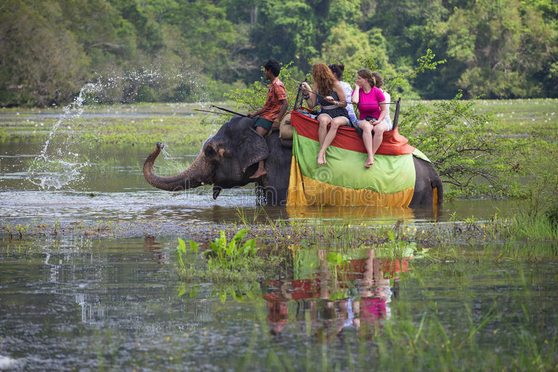 Der Elefant trägt Touristen und besprüht Wasser Sri Lanka lizenzfreies stockbild