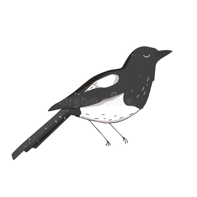 Der Elster-Krähenillustrationsvogelfarbbeschaffenheitselementgesichtsaugenschlaffliegen-Taubenfrieden c Schwarzweiss-wild lebende lizenzfreie abbildung