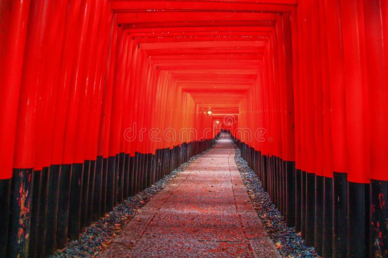Der erstaunliche Tempel Fushimi Inari-taisha, Japan stockfotografie