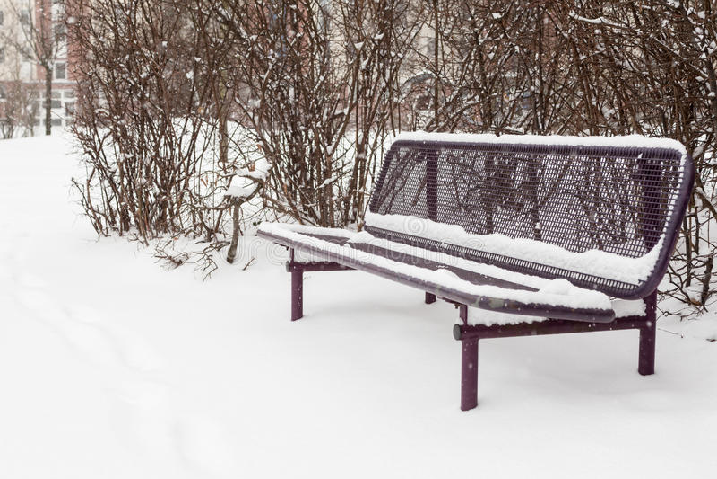 Der erste Schneesturm lizenzfreies stockbild
