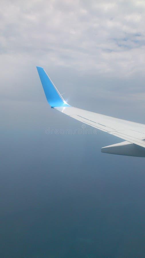 Der Flügel lizenzfreie stockfotografie