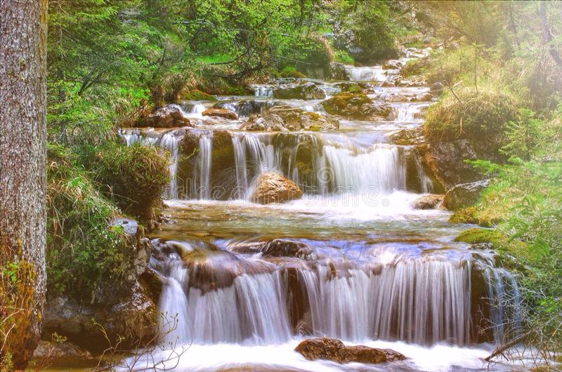 Der Fluss lizenzfreie stockfotos