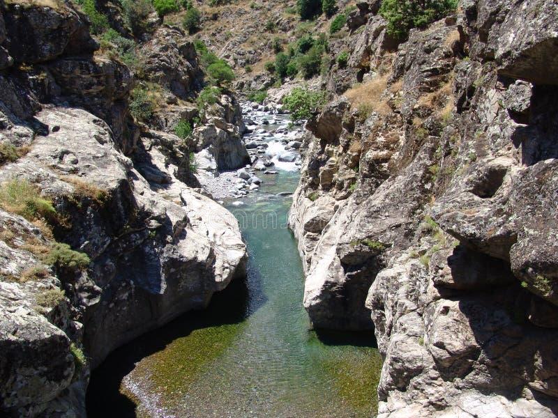 Der Fluss Asco in Korsika stockfotos