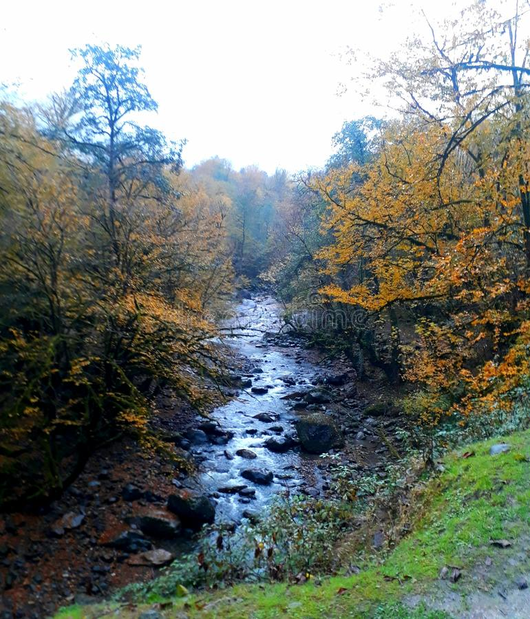 Der Fluss in gilan lizenzfreie stockbilder