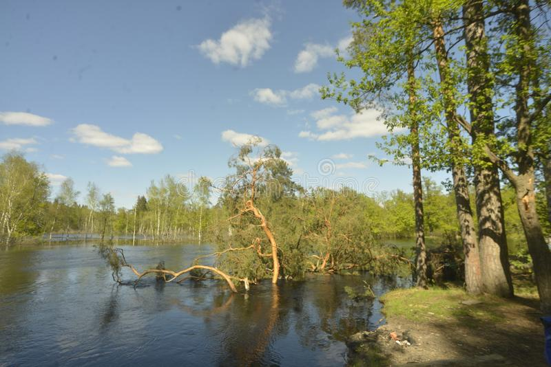 Der Fluss Pra Nationalpark Meshchersky Russland lizenzfreie stockfotos