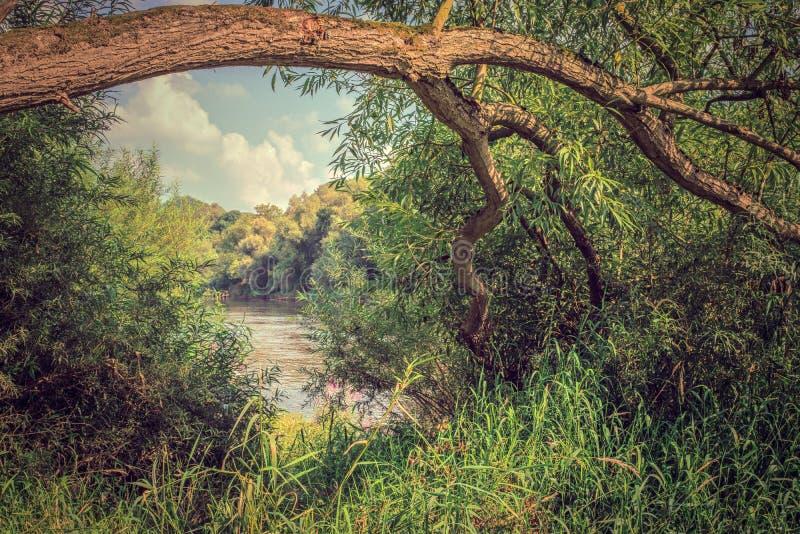 Der Fluss Severn bei Buildwas lizenzfreie stockfotos