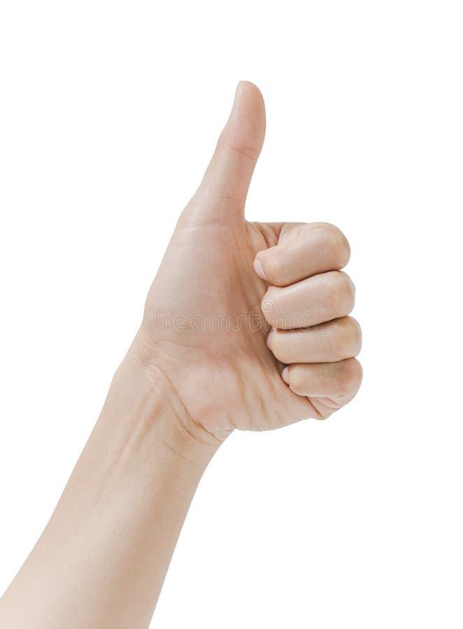 Der Frauenhandshowdaumen, der oben auf weißem Hintergrund lokalisiert wird, ist ein gutes Zeichen lizenzfreie stockfotos