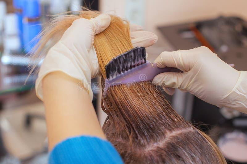 Der Friseur malt das Frau ` s Haar im Weiß, zutreffen die Farbe auf ihr Haar stockfotos