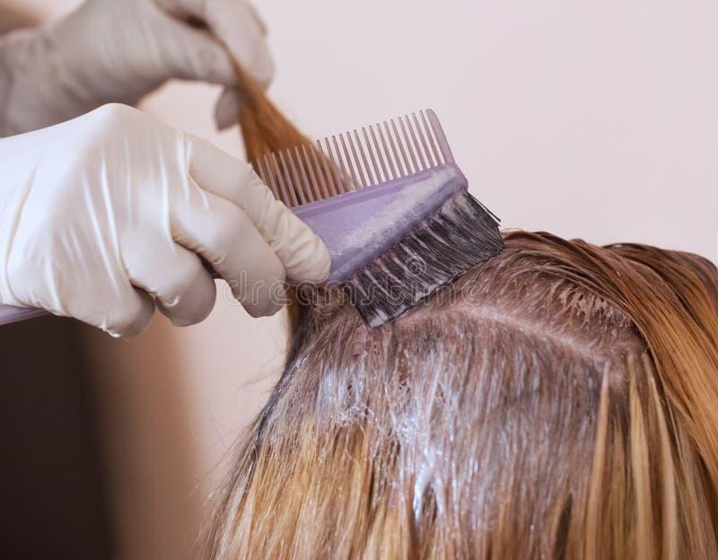 Der Friseur malt das Frau ` s Haar im Weiß, zutreffen die Farbe auf ihr Haar lizenzfreie stockbilder