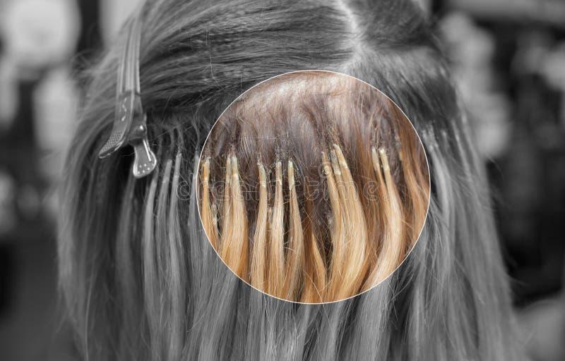 Der Friseur tut Haarerweiterungen ein junges Mädchen, eine Blondine in einem Schönheitssalon an stockbild