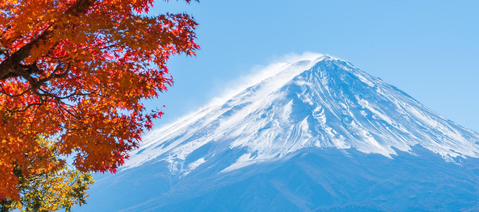 Der Fujisan in Autumn Color, Japan lizenzfreie stockfotos