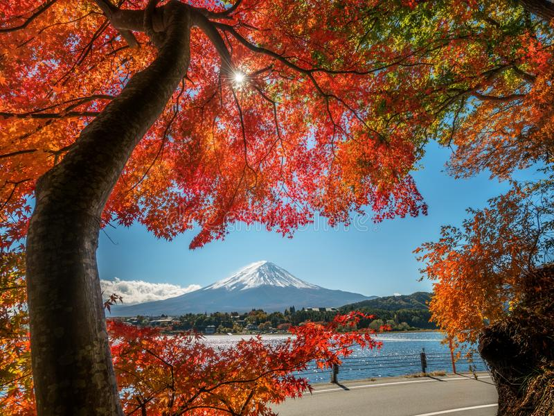 Der Fujisan in Autumn Color, Japan stockfoto