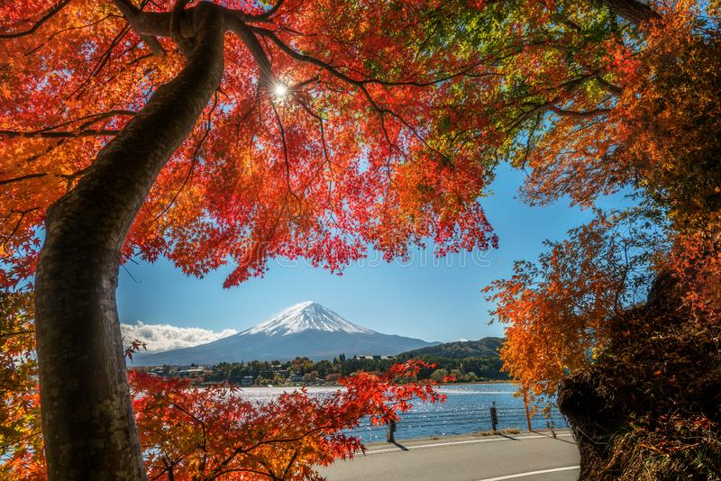 Der Fujisan in Autumn Color, Japan lizenzfreies stockfoto