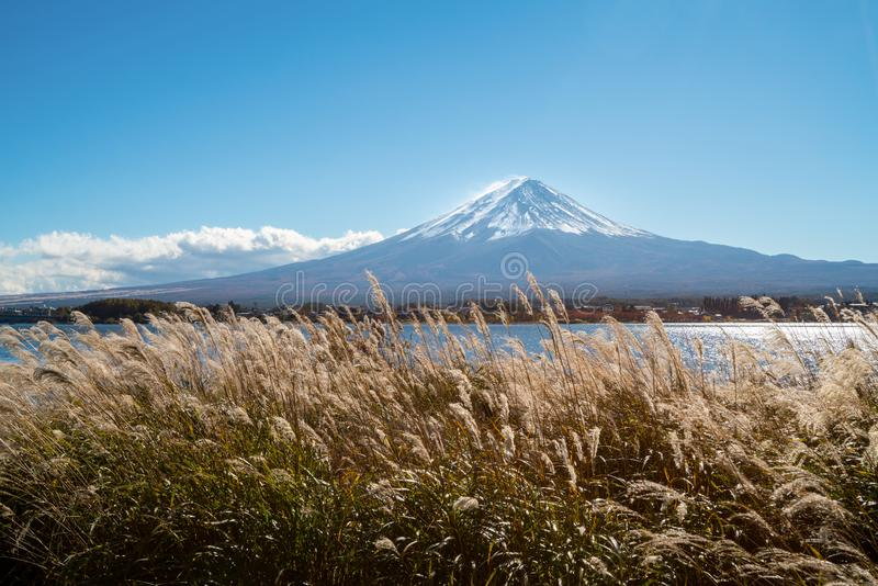 Der Fujisan in Autumn Color, Japan lizenzfreie stockbilder