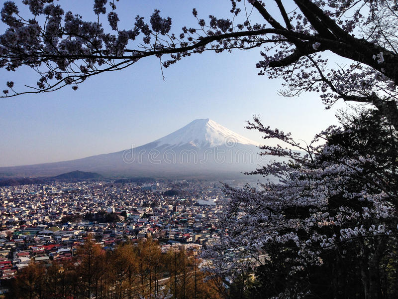 Der Fujisan, Kirschblüte, Fujiyoshida-Stadt, Japan lizenzfreie stockfotografie