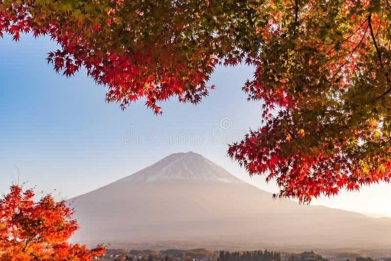 Der Fujisan mit Ahornblattänderung an der Herbstfarbe stockfotografie