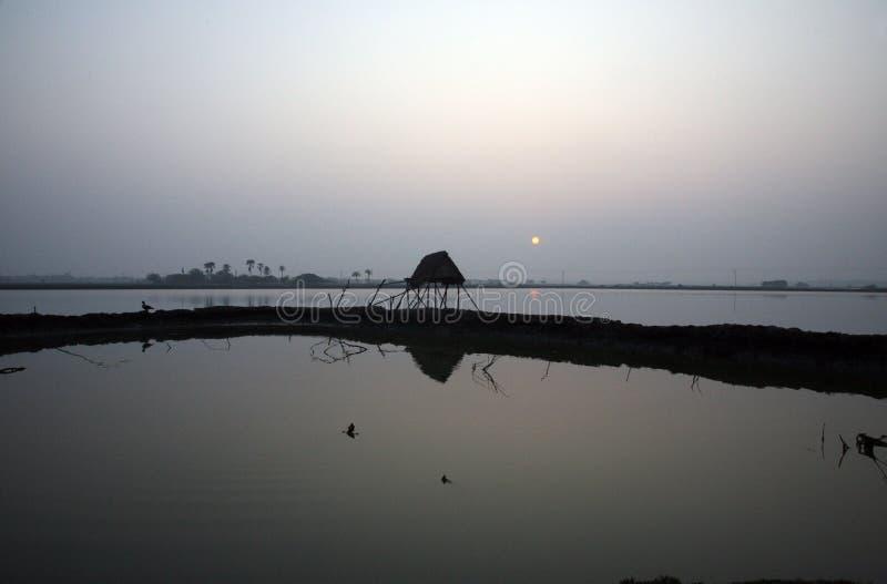 Der Ganges-Delta in Sundarbans, Westbengalen, Indien lizenzfreie stockfotografie