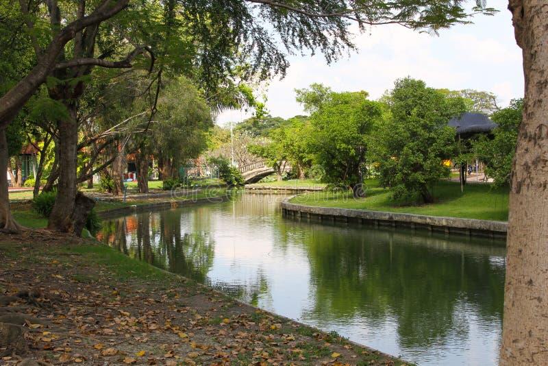 Der Garten dort sind kleine Ströme, grüne Bäume lizenzfreie stockfotos
