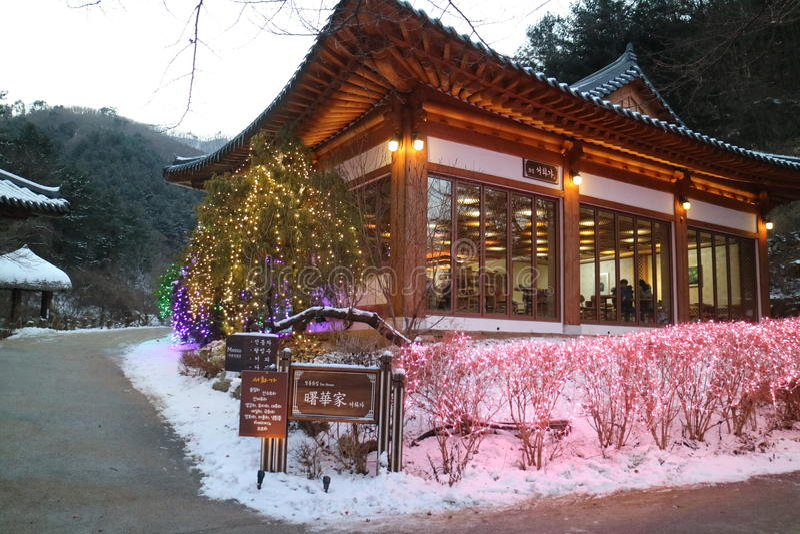 Der Garten von Morgenruhe Seoul stockbilder