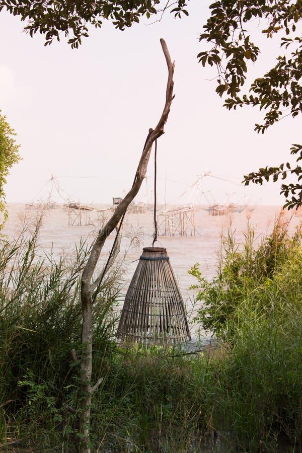 Der gelegentliche Bambus für anziehende Fische lizenzfreie stockbilder