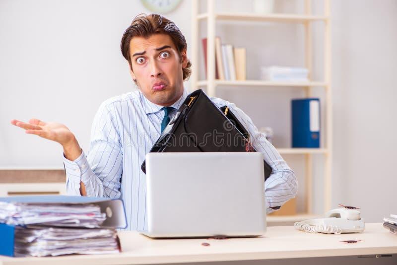 Der Geschäftsmann ekelte mit Schaben im Büro stockbilder