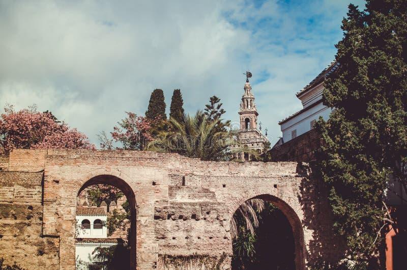 Der Giralda-Turm vom Alcazar von Sevilla lizenzfreie stockbilder