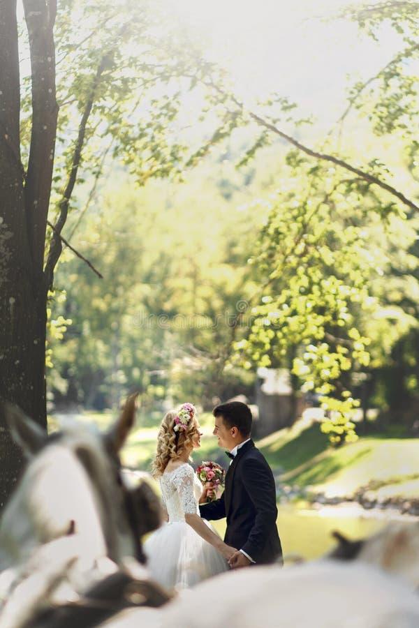 Der glücklichen gehendes Händchenhalten Hochzeits-Paare der Märchen in der Gleichheit lizenzfreies stockbild