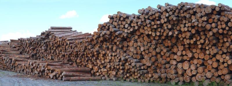 Der hölzernen trampeliger Forstwirtschaftsschnitt Stapelholzbauweise des Holzplatzes stockfotografie