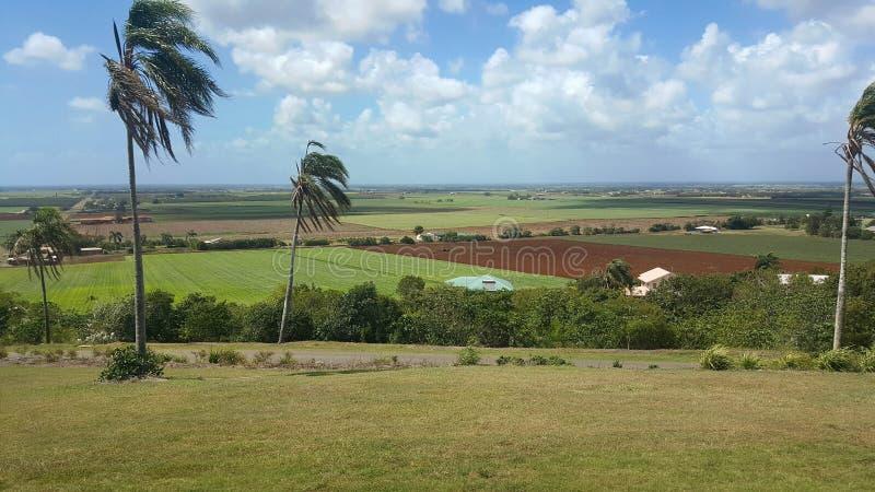 Der Hügel-Ausblick über Bundaberg Australien lizenzfreie stockbilder
