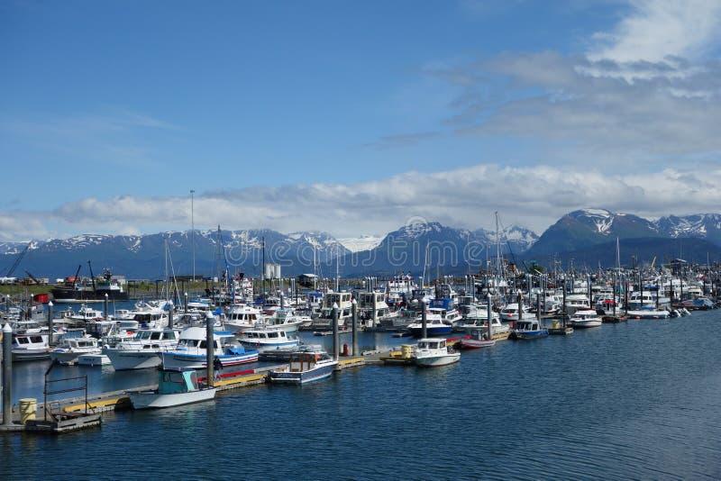 Der Hafen von Homer mit Bergen im Hintergrund stockbilder