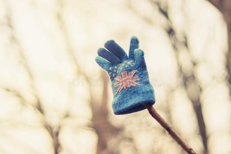 Der Handschuh des Kindes, der an einem Baum hängt lizenzfreies stockfoto