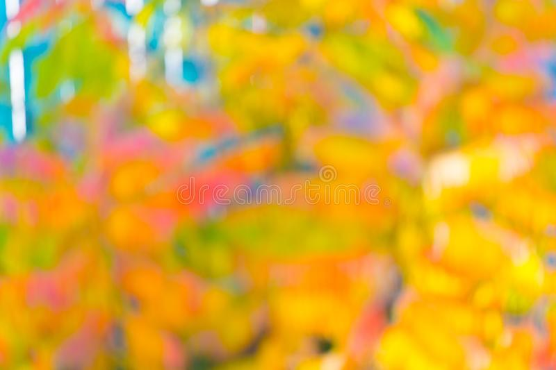 Der Herbst ist schön Abstrakter Hintergrund der Herbstfarben Lebhafte Herbstfarben Hell und tief in den Farben lizenzfreies stockfoto