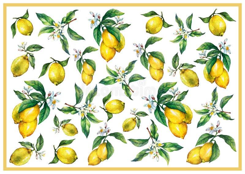Der Hintergrund der Niederlassungen der frischen Zitrusfruchtzitronen mit Grünblättern und -blumen lizenzfreie abbildung