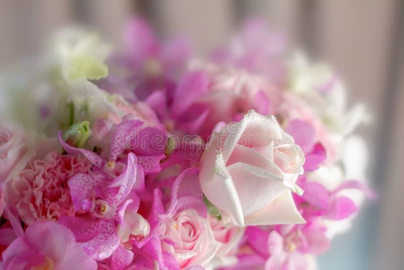 Der Hintergrund des selektiven Fokus der bunten Blumen stockbilder