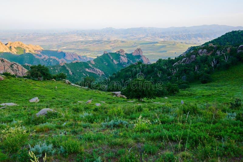 Der hohe Bergwiesesonnenuntergang stockbilder