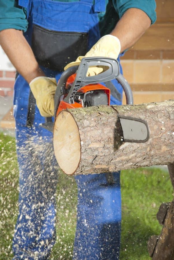Der Holzfäller stockfotografie