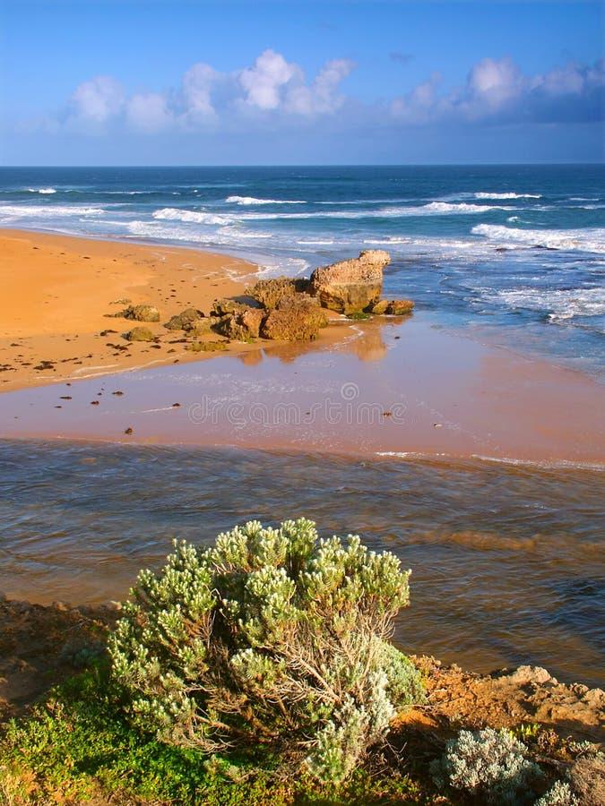Der Hopkins Fluss und Pazifische Ozean stockbild