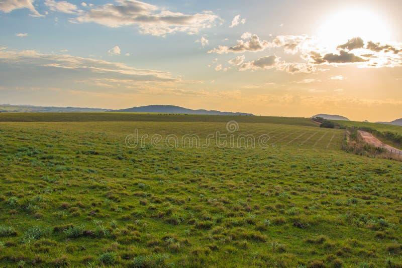 der Horizont und der Schotterweg 01 stockbilder