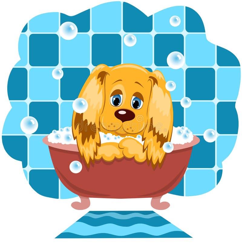 Der Hund Badet. Lizenzfreie Stockfotografie