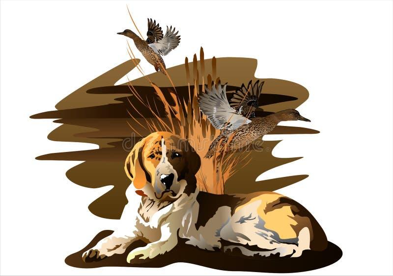 Der Hund und die Ente stock abbildung
