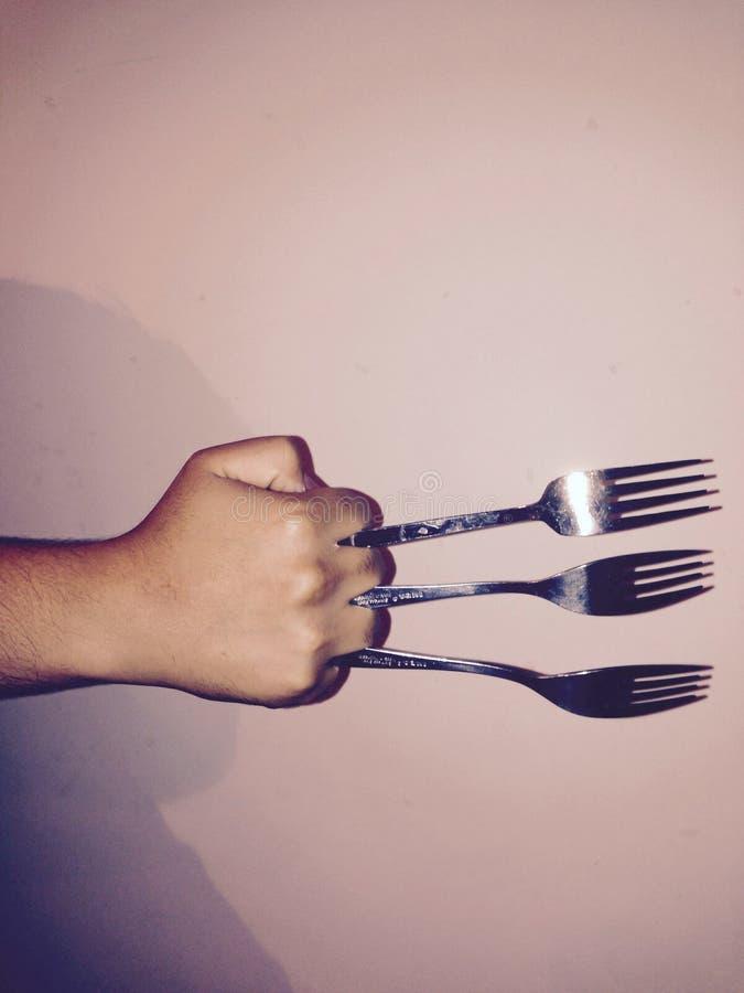 der hungrige Vielfrass stockbilder