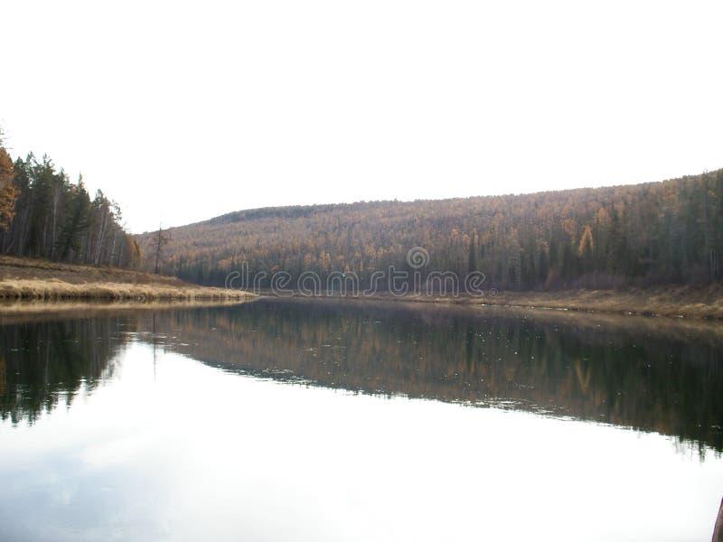 Der Ilim-Fluss in Ost-Sibirien stockbilder