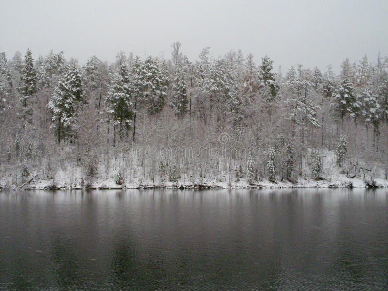 Der Ilim-Fluss in Ost-Sibirien lizenzfreie stockfotos