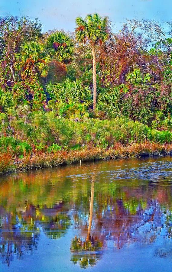 Der Inselsumpf hat einen Überfluss an der Farbe entlang den Flussbänken lizenzfreie stockbilder
