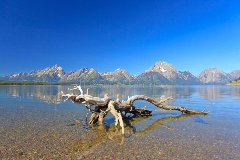 Der jackson See in großartigem Teton stockbild