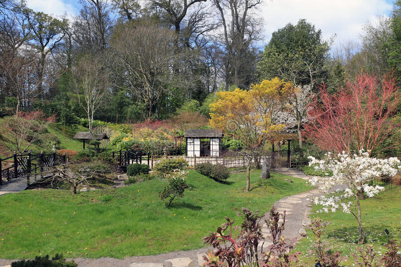 Der japanische Garten bei Kingston Lacy stockfotografie