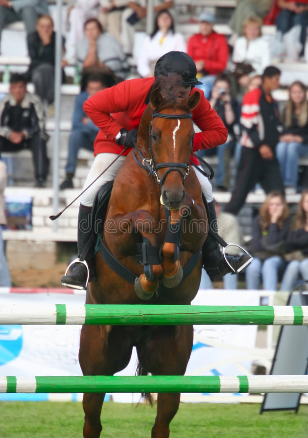 Der Jockey springt durch ein Hindernis stockfotografie